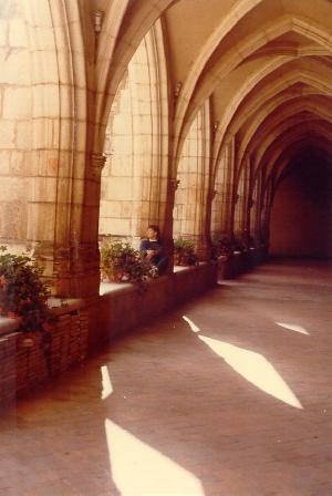 Chiesa agostiniana brou for Interno a un convento